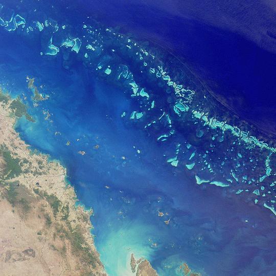 Grande barrière de corail australienne