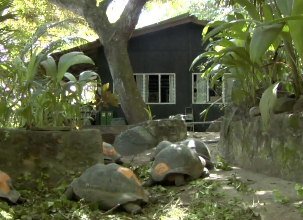 La maison de Brandon